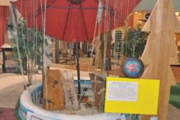 Eddy's Flooring America Rain Forest display