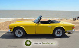 Bamboo-Hardwood-Incentive-Car-Prize