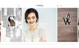 Vitromex-Website