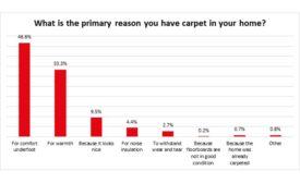 brits carpet