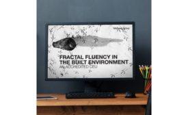 fractal fluency