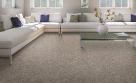 carpet refresh