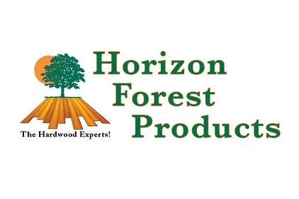horizon-forest.jpg