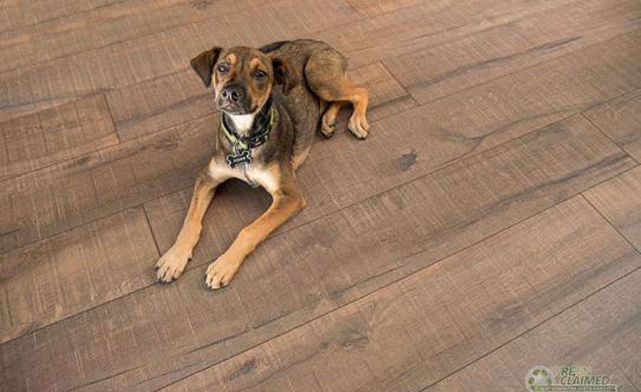 Cali Bamboo Introduces Inspired Cork Flooring Line 2015