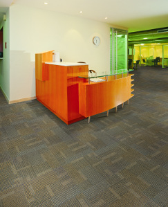 Fishman Flooring Solutions Has Introduced Its First Private Label Linesu2014 Fishman Carpet Tile And Fishman Sports Flooring.
