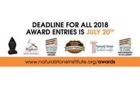 NSI-Pinnacle-Award